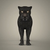 19 44 08 377 tiger lion black leopard 04 4