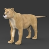 19 44 37 616 realistic lioness 01 4