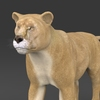19 44 37 743 realistic lioness 02 4