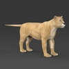 19 44 38 304 realistic lioness 07 4