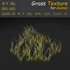 19 44 54 837 grass 04 4