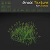 19 44 56 942 grass 17 4