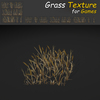 19 44 57 871 grass 24 4