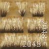 19 44 58 691 06 dry dense grass 4