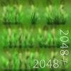 19 44 59 986 17 bent grass 4