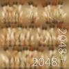 19 45 00 385 19 dry bentgrass 4