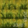 19 45 00 474 20 plains grass texture 4