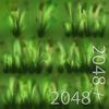 19 45 00 614 22 grass texture 4