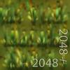 19 45 00 766 23 plains grass 4