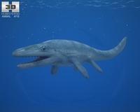 Mosasaurus (Mosasaurus Hoffmannii) 3D Model