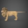 19 48 44 830 realistic lion 03 4