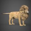 19 48 45 382 realistic lion 06 4