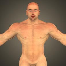 Young Muscular Man 3D Model
