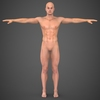 19 48 50 779 realistic male robert 01 4