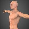 19 48 51 699 realistic male robert 03 4