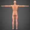 19 48 52 912 realistic male robert 11 4