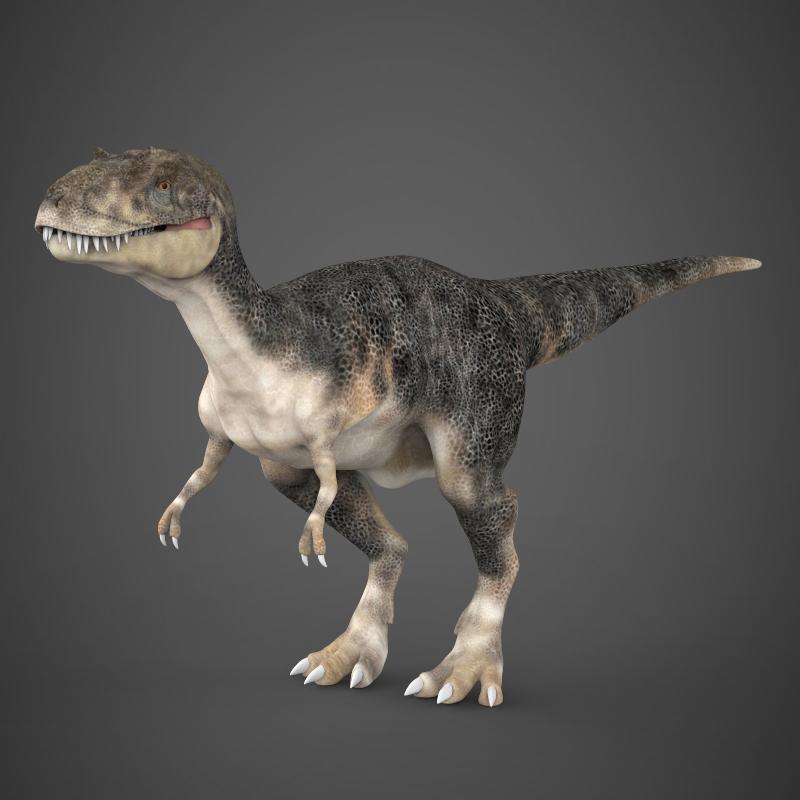 Realistic Dinosaur Tyrannosaurus 3D Model