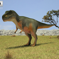 Tyrannosaurus (Tyrannosaurus) 3D Model