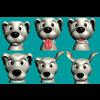 19 49 34 19 dog13 4