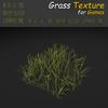 19 54 29 370 grass 20 4