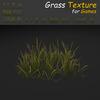 19 54 29 67 grass 21 4
