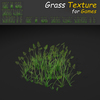 19 54 30 235 grass 17 4