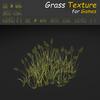 19 54 30 719 grass 18 4
