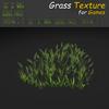 19 54 31 697 grass 14 4