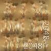 19 54 32 37 13 dry wheatgrass texture 4
