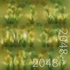 19 54 32 472 12 wheatgrass 4