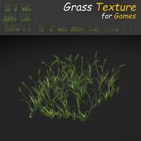 WheatGrass Texture