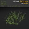 19 54 32 656 grass 11 4