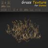 19 54 32 852 grass 10 4