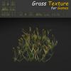 19 54 33 537 grass 09 4
