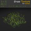 19 54 34 285 grass 08 4