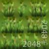 19 54 34 432 08 timothy grass texture 4