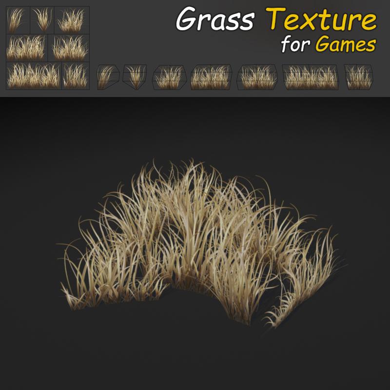 Dry Dense Grass