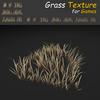 19 54 34 959 grass 05 4