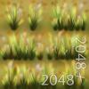 19 54 35 315 04 wild grass 4