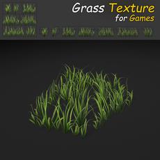 Wild Grass Texture