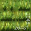 19 54 35 789 03 wild grass texture 4