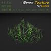 19 54 35 898 grass 02 4