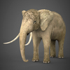 19 54 54 459 realistic elephant 01 4