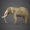 19 54 54 656 realistic elephant 03 4