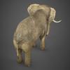 19 54 54 807 realistic elephant 05 4