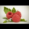 20 05 15 272 0raspberry 4