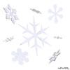20 13 23 599 snowflake 01 4