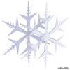 20 13 23 747 snowflake 02 4