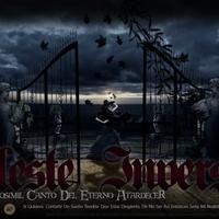 Celeste inversa social 2014 2 cover