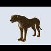 14 33 34 276 cheetah 001 4